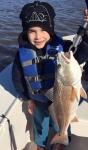 zornfish.jpg